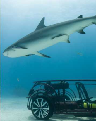 Volkswagen Opens Wide for Discovery Shark Week